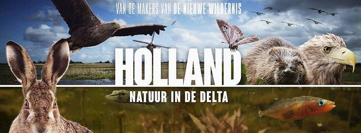 Holland natuur in de delta